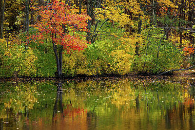 Of Autumn Photograph - Colors Of Autumn by Karol Livote