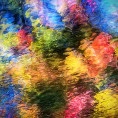 Colors Of Fall Print by Vicki Jauron