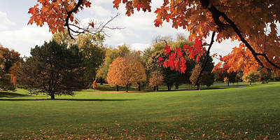 Colors Of Loose Park Original by Chad Davis