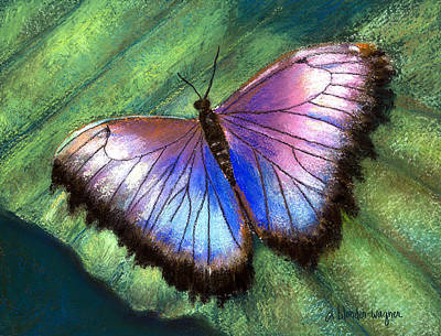 Butterfly Photograph - Colors Of Nature - Hunawihr Morpho by Arline Wagner