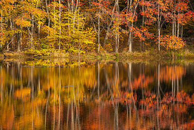 Of Autumn Photograph - Colors Of The Season by Karol Livote