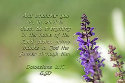 Photograph - Colossians 3 Verse 17 by Alan Skonieczny