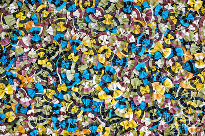 Colourful Butterflies Print by Tim Gainey