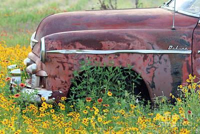By Joe Jake Pratt Photograph - Comes With Flowers by Joe Jake Pratt