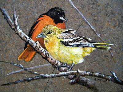 Oriole Painting - Comforting by Stan White