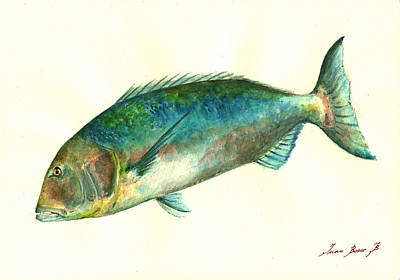 Common Dentex Fish Painting Print by Juan  Bosco