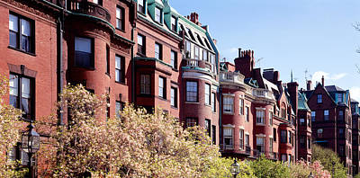 Commonwealth Avenue Boston Ma Print by Panoramic Images