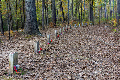 Natchez Trace Parkway Photograph -  13 Unknown Confederate Soldiers - Natchez Trace by Debra Martz