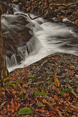 Smokey Mountains Photograph - Constant by Jon Glaser