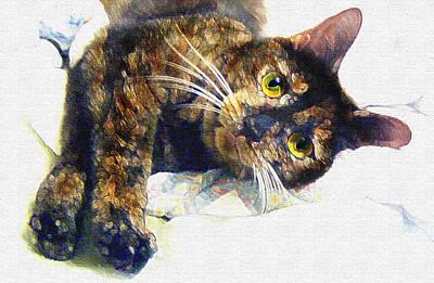 Kittens Digital Art - Contented Cat by Jane Schnetlage