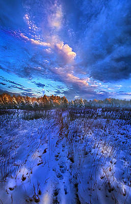 Cool Blue North Print by Phil Koch