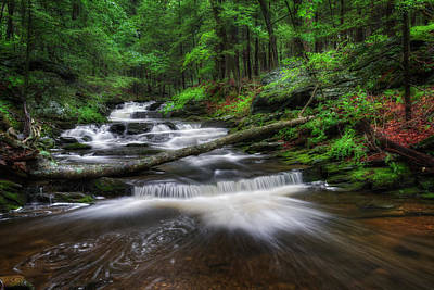 Cool Spring Stream Print by Bill Wakeley
