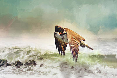 Osprey Mixed Media - Cool Waters by Ulanawa Foote