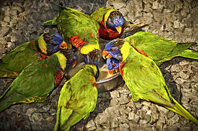 Parrot Digital Art - Cooler Talk by Carolyn Marshall