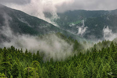 Beauty Photograph - Copper Salmon Wilderness 2 by Leland D Howard