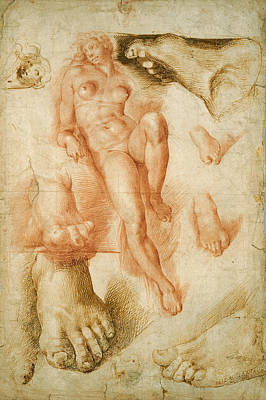 Drawing - Copy After Michelangelo's Aurora by Bartolommeo Passerotti
