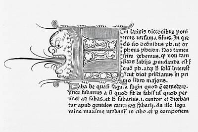 Copy Drawing - Copy Of A Page From Catholicon Printed by Vintage Design Pics