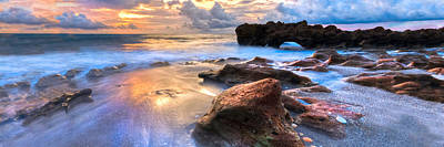 Coral Garden Panorama Print by Debra and Dave Vanderlaan