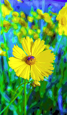 Coreopsis Flower And Bee Image Print by Paul Price