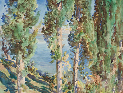 Corfu Cypresses Print by John Singer Sargent