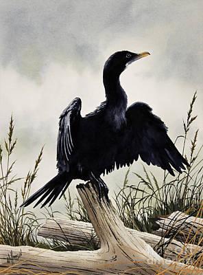 Cormorant Print by James Williamson