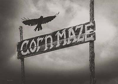 Crow Photograph - Corn Maze by Bob Orsillo