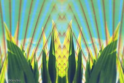 Tassel Digital Art - Cornfield At Sunrise by Gerry Tetz
