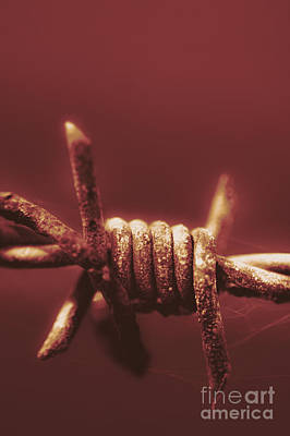 Barbed Wire Photograph - Corrosion Of Civil Liberties by Jorgo Photography - Wall Art Gallery