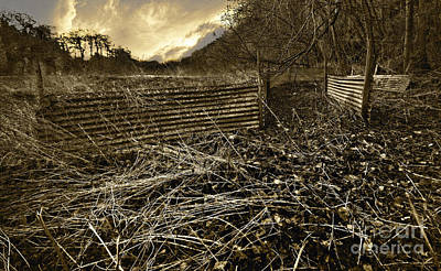 Run-down Photograph - Corrugated Tin Pen by Meirion Matthias