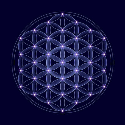 Merkaba Digital Art - Cosmic Flower Of Life With Stars by Peter Hermes Furian