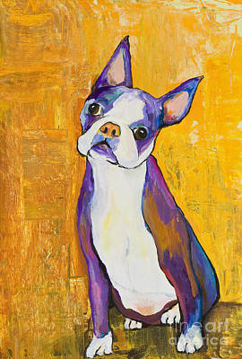 Boston Terrier Painting - Cosmo by Pat Saunders-White