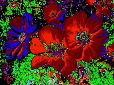 Cosmos Abstract Print by Will Borden