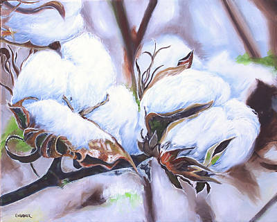 Cotton Bolls Original by Karl Wagner