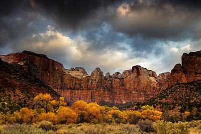 Desert Photograph - Cottonwoods Of Zion by Andrew Soundarajan