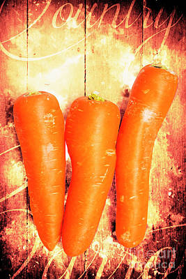 Carrot Photograph - Country Cooking Poster by Jorgo Photography - Wall Art Gallery