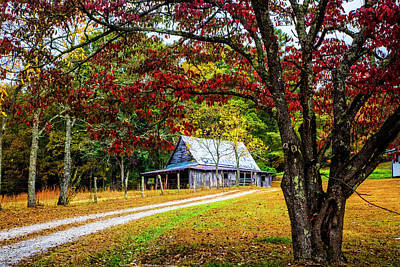 Dogwood Lake Photograph - Country Paths by Debra and Dave Vanderlaan