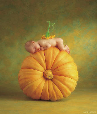 Pumpkin Photograph - Country Pumpkin by Anne Geddes