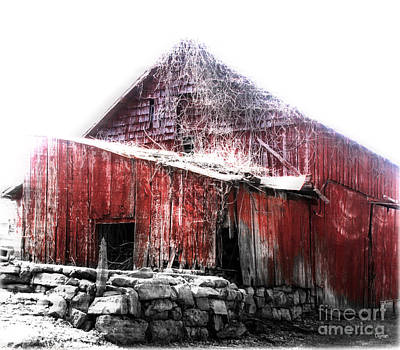 Primitive Photograph - Country Red  by Steven Digman