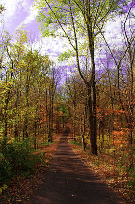 Country Dirt Roads Digital Art - Country Road In Autumn by Bill Cannon
