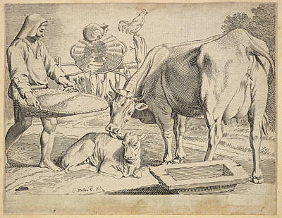 Drawing - Country Scene With A Peasant Cow And Calf by Claude Mellan