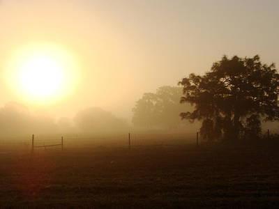 Country Sunrise Print by Kimberly Camacho