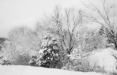 Rockbridge Photograph - Country Winter by Kathy Jennings