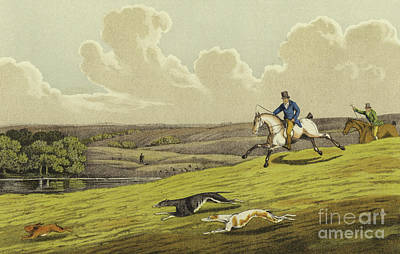 Rabbit Drawing - Coursing by Henry Thomas Alken