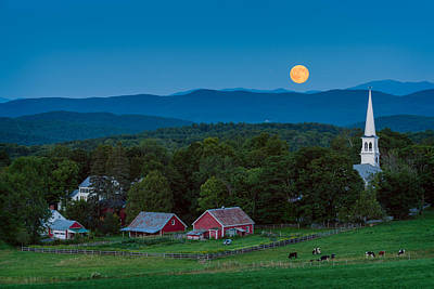 Cow Under The Moon Print by Michael Blanchette