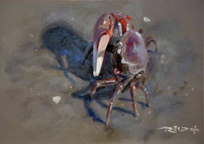 Crabby Print by Christopher Reid