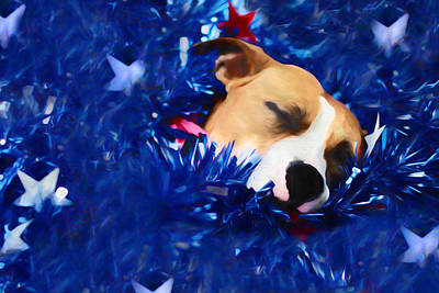 Puppy Digital Art - Cradled By A Blanket Of Stars And Stripes by Shelley Neff