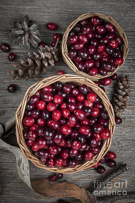 Cranberries In Baskets Print by Elena Elisseeva