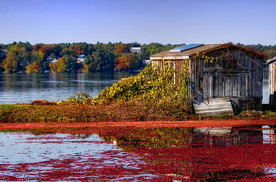 Waterview Photograph - Cranberry Bog Farm II by Gina Cormier