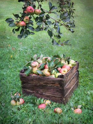 Apple Mixed Media - Crate Of Apples by Lori Deiter