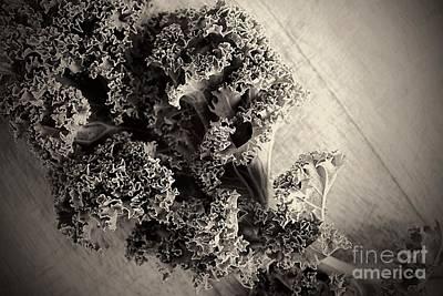 Interior Design Photograph - Crazy Kale by Clare Bevan